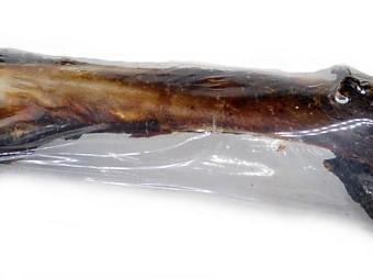 Kangaroo Leg Bone Dog Treats