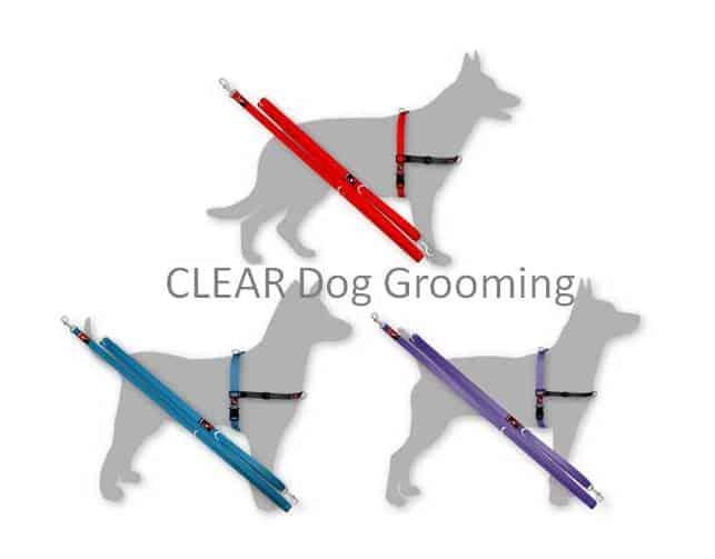 Black Dog Wear Balance Harness