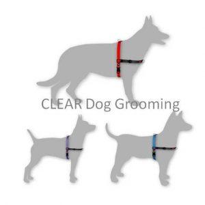Black Dog Balance Harness