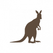 Kangaroo Dog Treats