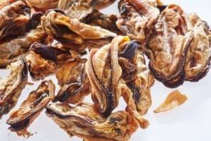 Green Lip Mussels Dog Treats