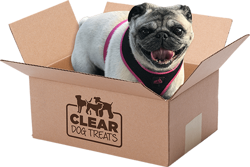 Clear dog treats delivery