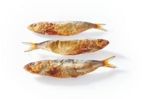 Sardines Dog Treats