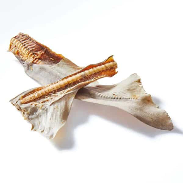 Shark Tail Cartilage Dog Treats - Clear Dog Treats