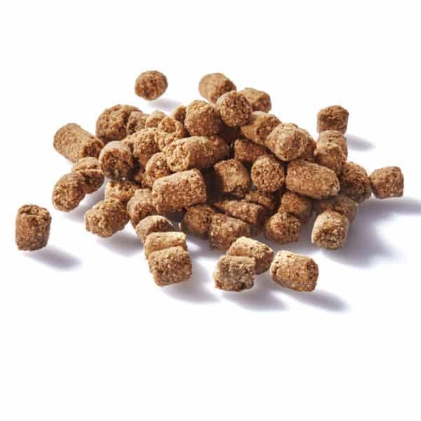 Beef Kong Bites - Clear Dog Treats - providing all-natural, preservative free pet treats